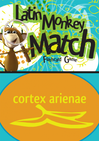 Song School Latin Monkey Match Flashcard Game