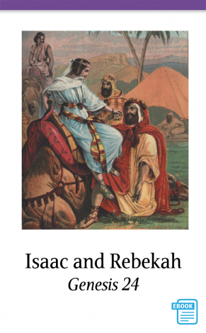 Genesis to Joshua Bible Cards -Detweiler - Bible