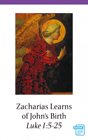 Gospels Flashcards (eBook)